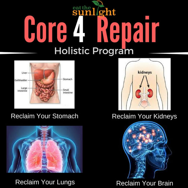 Core 4 Repair Holistic Program