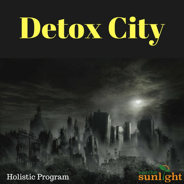 Detox City Holistic Program