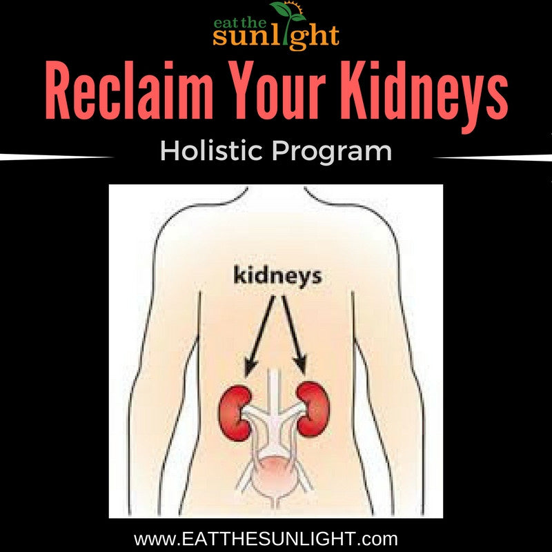 Reclaim Your Kidneys Holistic Program (3 Mo Supply of Tea Included)