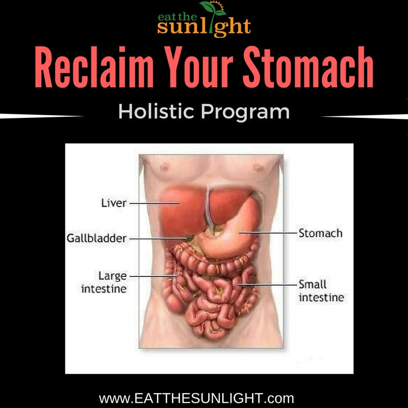 Reclaim Your Stomach Holistic Program (3 Mo Supply of Stomach Tea Included)