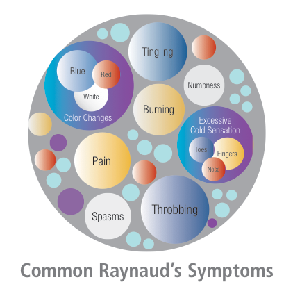 Common Raynaud's Symptoms