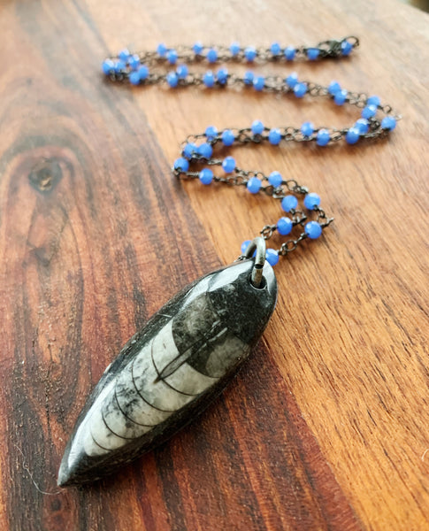 My Fossilized Favorite Necklace in Orthoceras and Rosary Chain