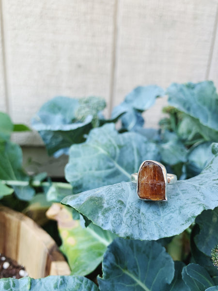 Orange Raw Kyanite Sterling Silver Ring - Size 7
