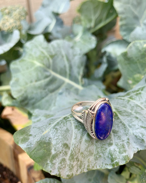 Lapis Lazuli Sterling Silver Ring - Size 7