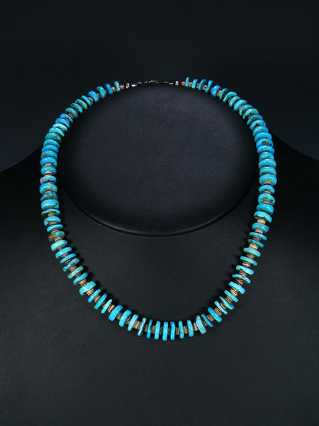 Native American Indian Jewelry Single Strand Turquoise and Heishi Necklace