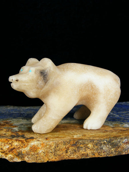 Honey Onyx Bear Zuni Fetish by Calvin Weeka - PuebloDirect.com - 1