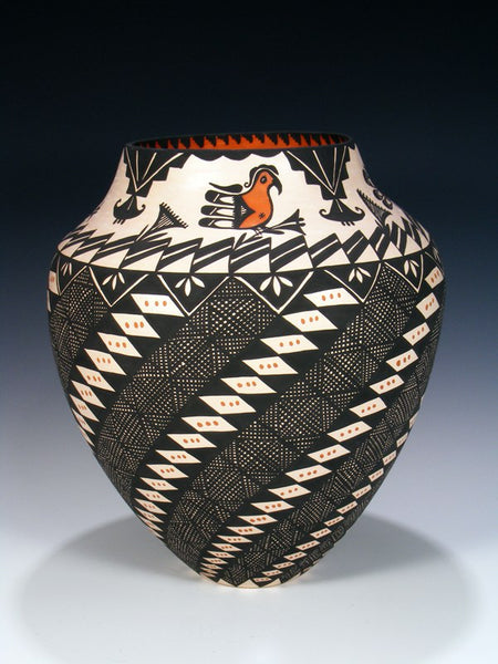 Acoma Pueblo Hand Coiled Eye Dazzler Parrot Pottery Olla