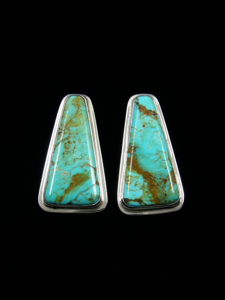 Turquoise Santo Domingo Post Earrings