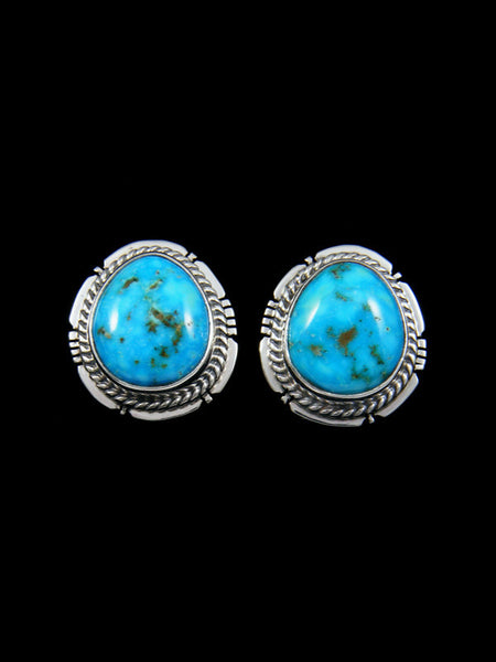 Sterling Silver Post Fox Turquoise Earrings
