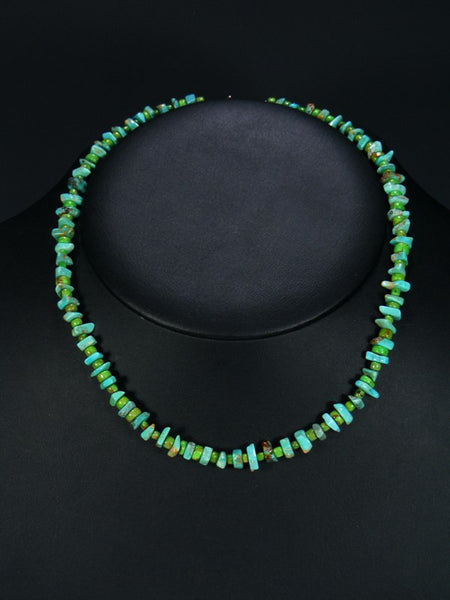 Native American Turquoise and Gaspeite Choker Necklace