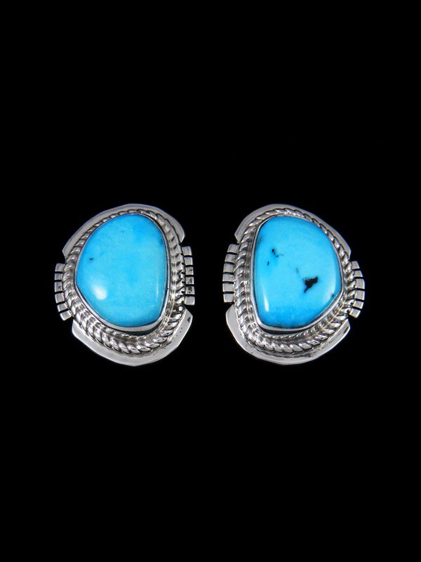 Sleeping Beauty Turquoise Sterling Silver Post Earrings