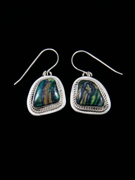 Navajo Fossilized Mammoth Tooth Sterling Silver Dangle Earrings