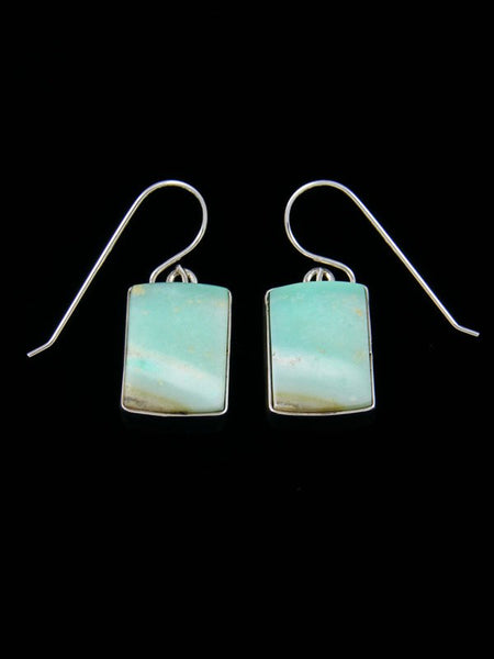 Native American Sterling Blue Opalized Petrified Wood Dangle Earrings