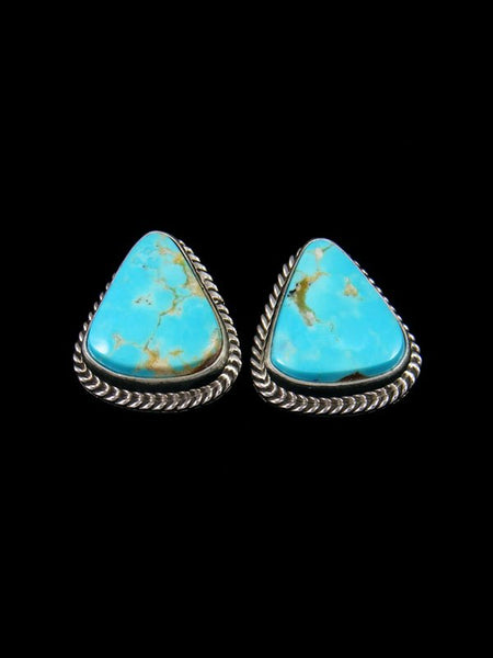 Kingman Turquoise Native American Jewelry Post Earrings