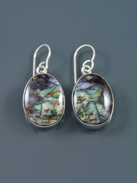 Native American Jewelry Blue Opalized Petrified Wood Dangle Earrings