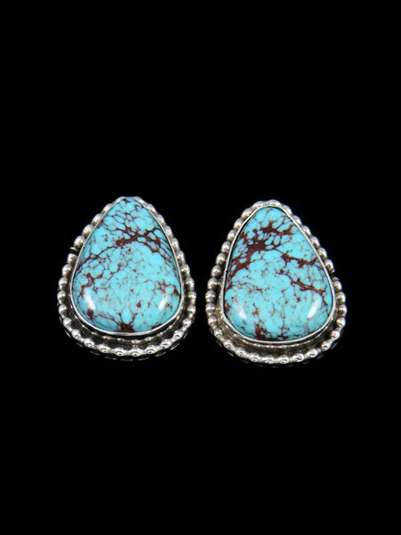 Navajo Egyptian Turquoise Sterling Silver Post Earrings