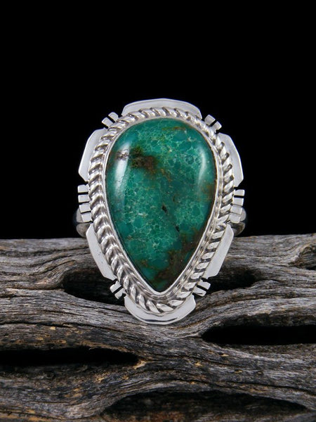 Sierra Nevada Turquoise Ring, Size 8