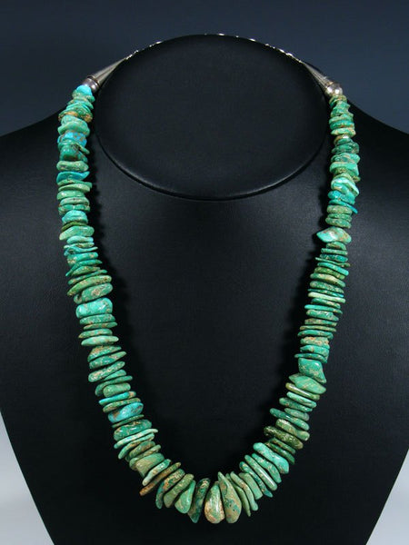 Native American Natural Fox Turquoise Necklace
