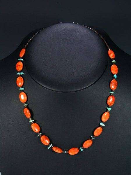 Native American Turquoise Apple Coral and Shell Heishi Necklace