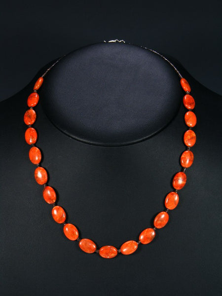 Native American Apple Coral and Shell Heishi Necklace