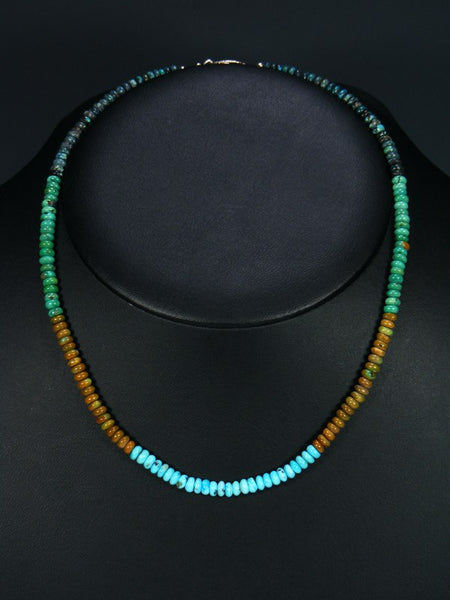 Native American Indian Jewelry Single Strand Blue Green Turquoise Necklace