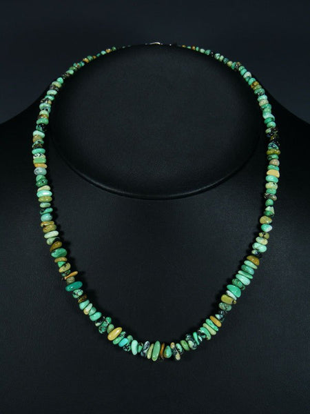 Native American New Lander Variscite Single Strand Necklace