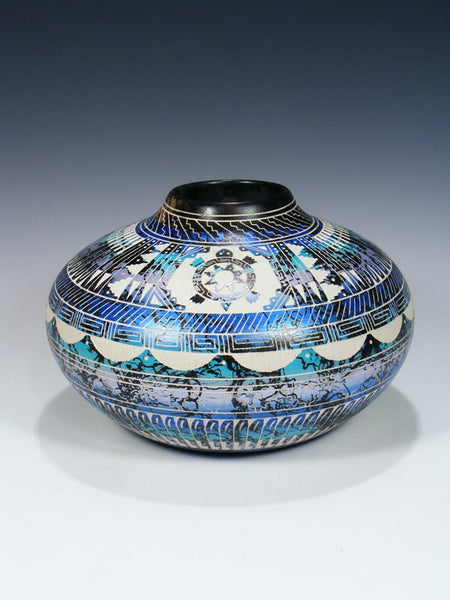 Navajo Turtle Etched Painted Horsehair Pottery