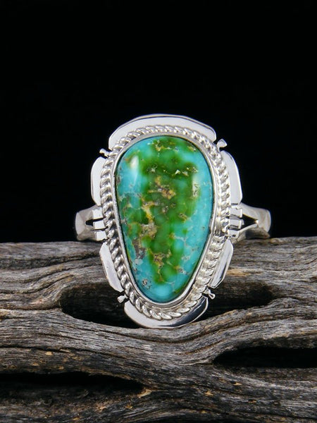 Sonoran Gold Turquoise Ring, Size 8.5