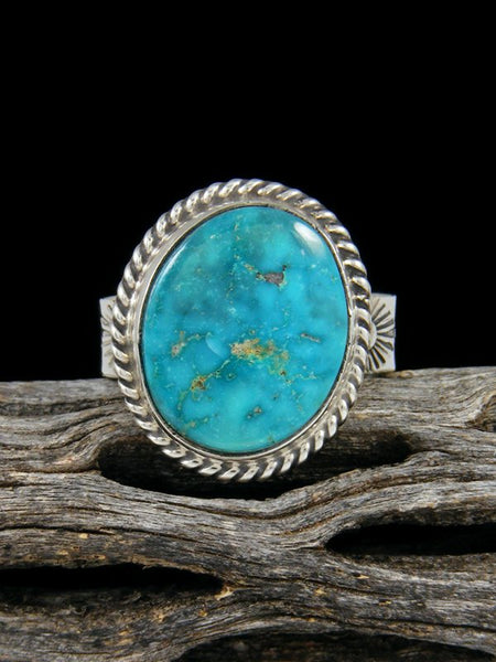 Turquoise Mountain Ring, Size 8