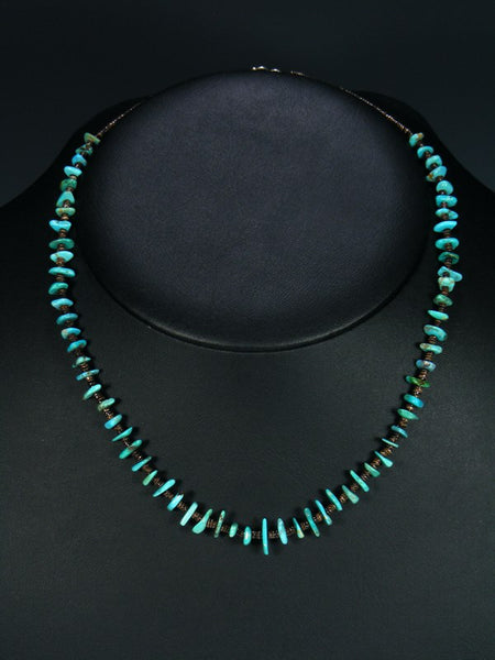 Native American Turquoise Heishi Choker Necklace