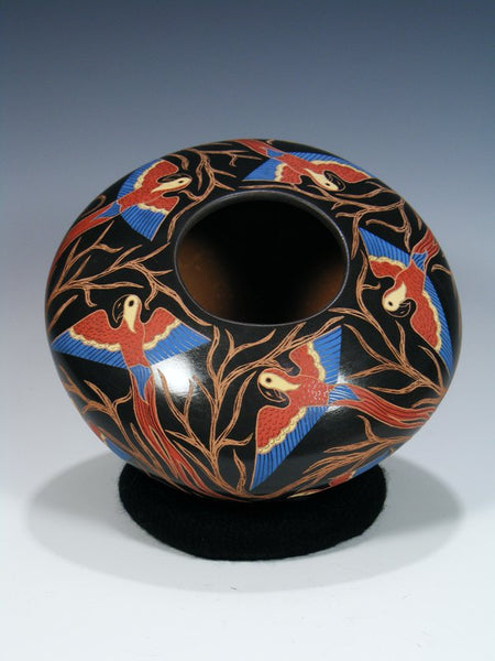 Mata Ortiz Painted and Etched Macaw Pottery