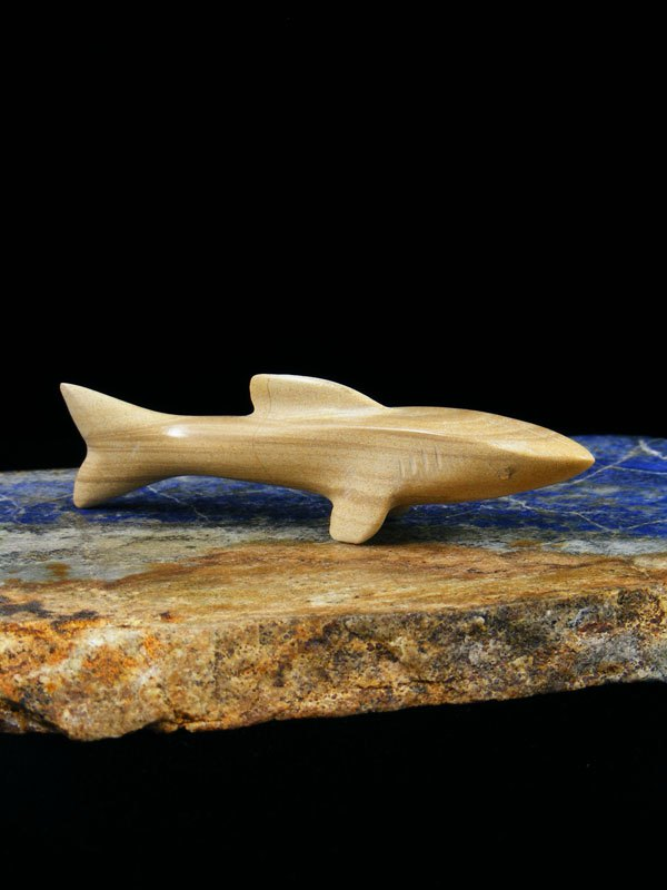 Picture Jasper Shark Zuni Fetish
