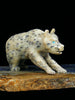 Soapstone Bear Zuni Fetish by Dan Quam - PuebloDirect.com - 1