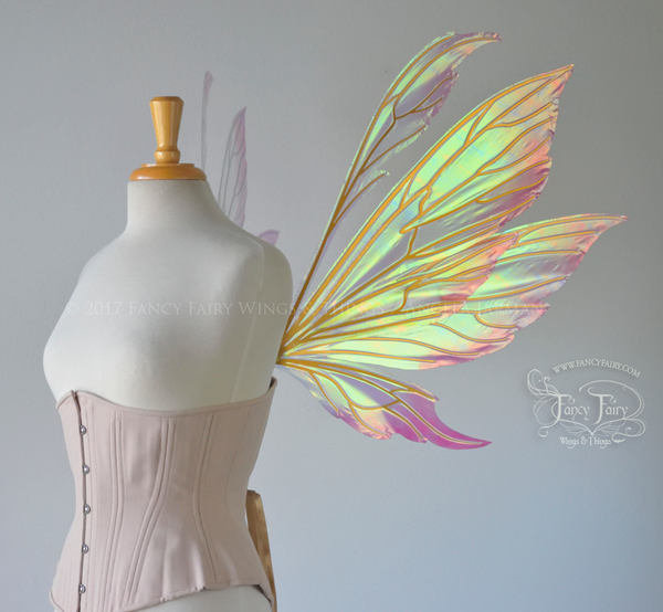 "Aynia ""Rose Blush"" Painted Iridescent Fairy Wings with Gold Veins"