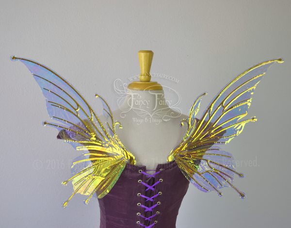 Small Flora Iridescent Fairy Wings in Clear with Gold veins