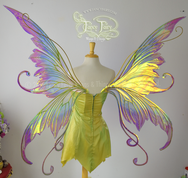 Giant Amy Brown Bubble Rider Iridescent Fairy Wings Painted in Acid Rainbow style with Gold veins
