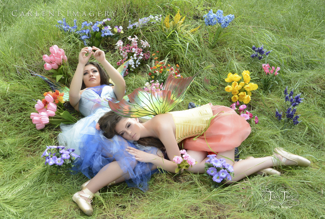 Flower Fairies Napping, photo by Carlene Imagery