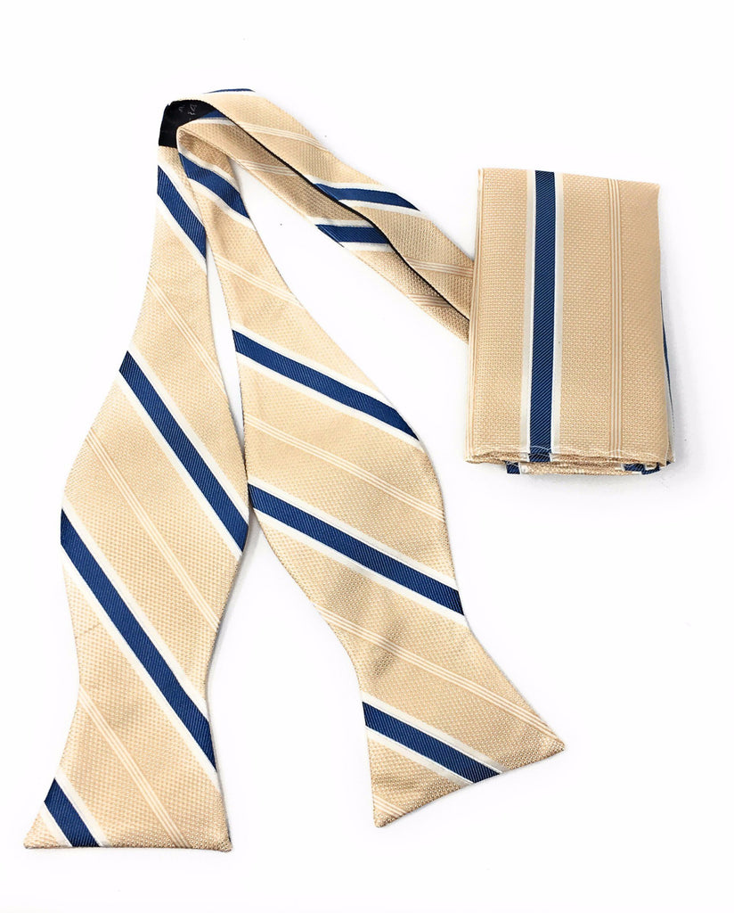 Beige & Blue Regal Silk Self Tie Bow Tie Set Including Pocket Square