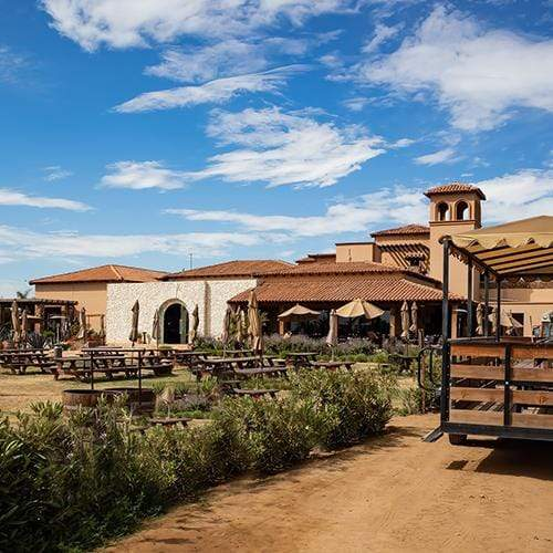 Top 4 Wineries to Visit in Valle de Guadalupe