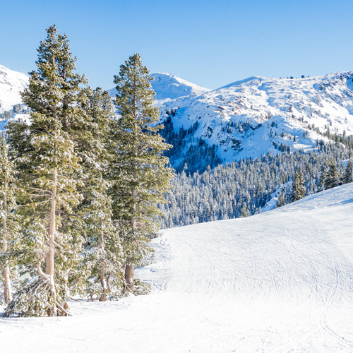 The Best Places to Ski & Snowboard on the West Coast