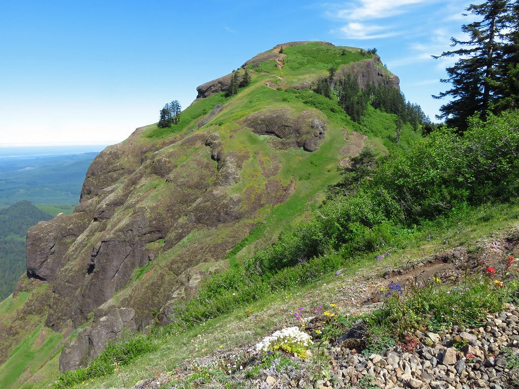 Saddle Mountain near the Oregon Coast