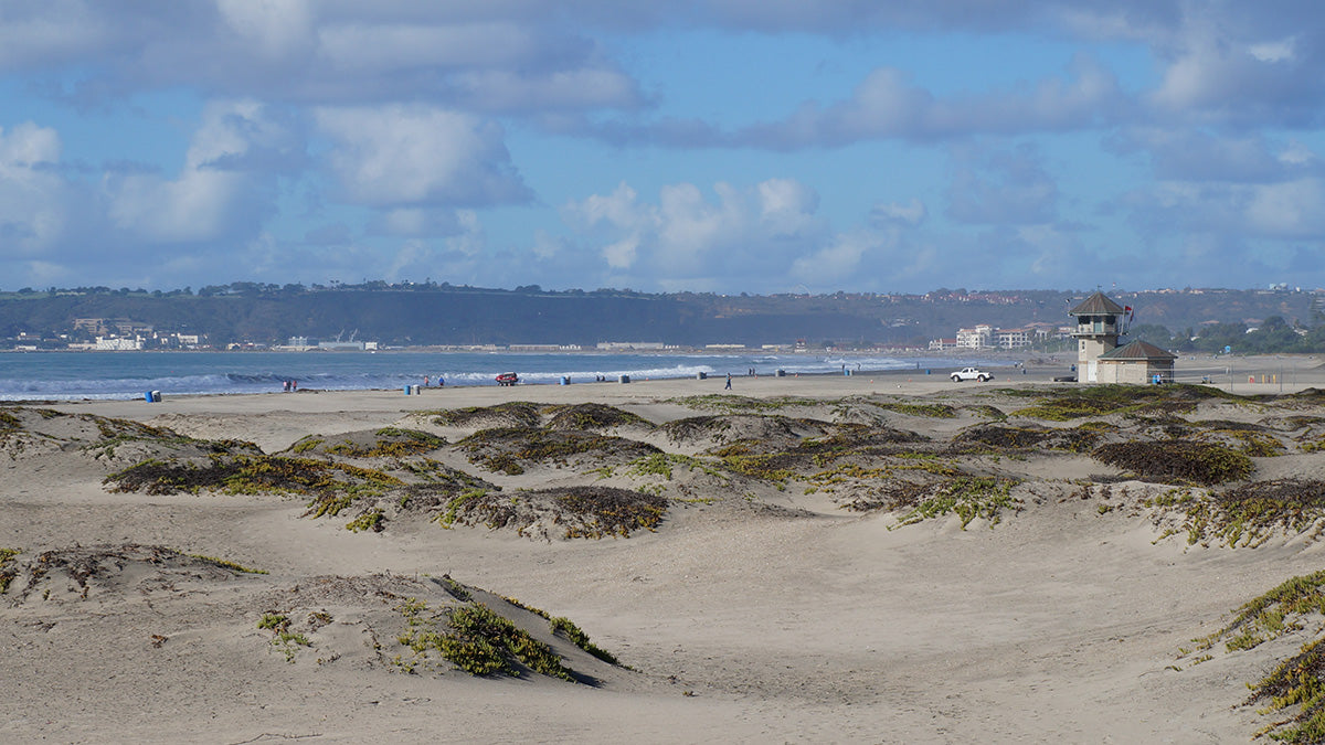 Ultimate San Diego Beach Guide: Coronado Central Beach
