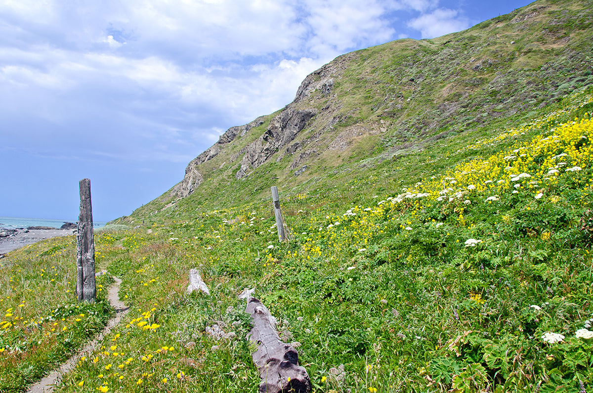 The Lost Coast Trail in Northern California