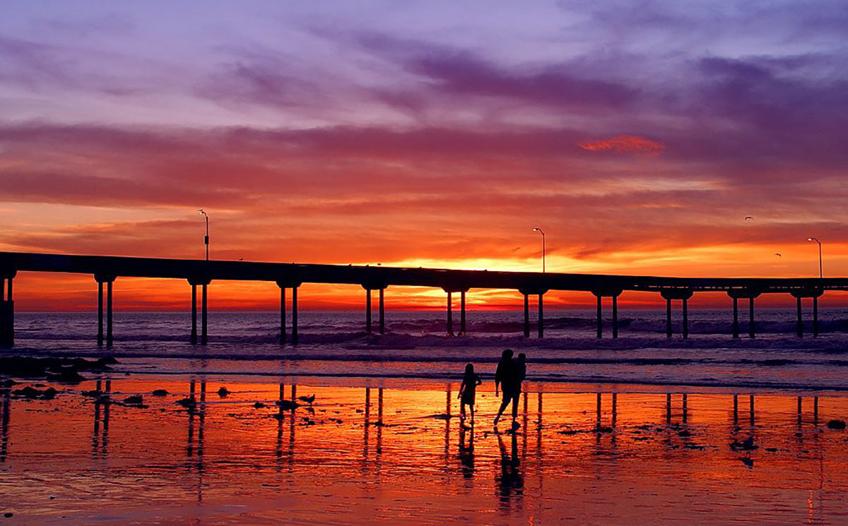 Ultimate San Diego Beach Guide: Ocean Beach