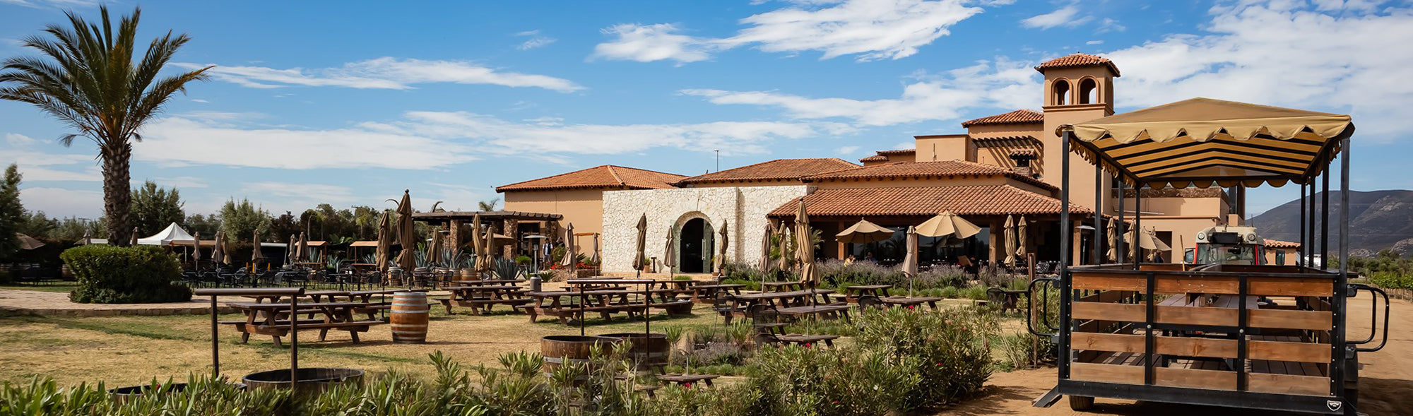 The Top Four Wineries to Visit in Valle de Guadalupe
