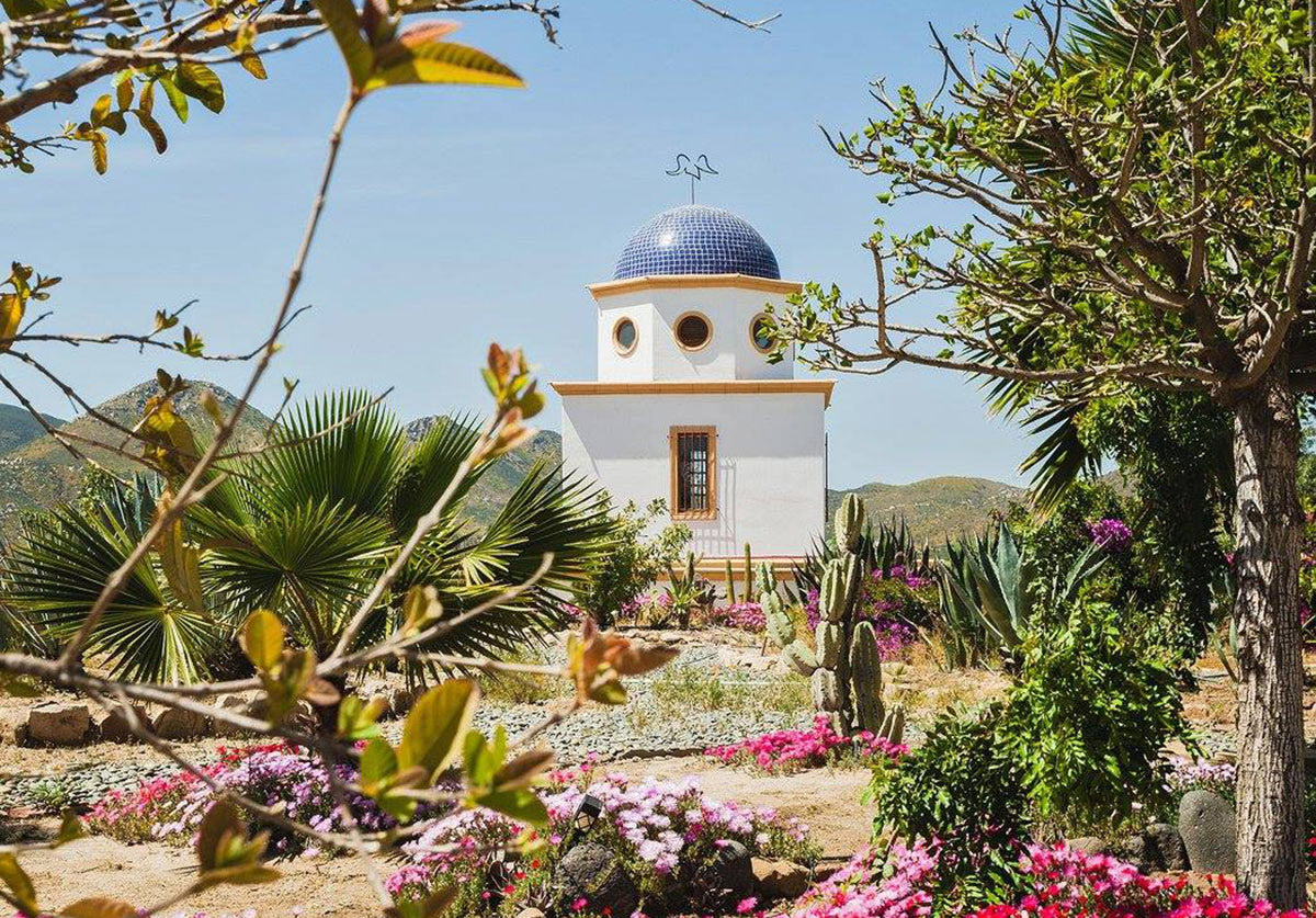 Wineries to Visit in Valle de Guadalupe: Vinicola Adobe Guadalupe