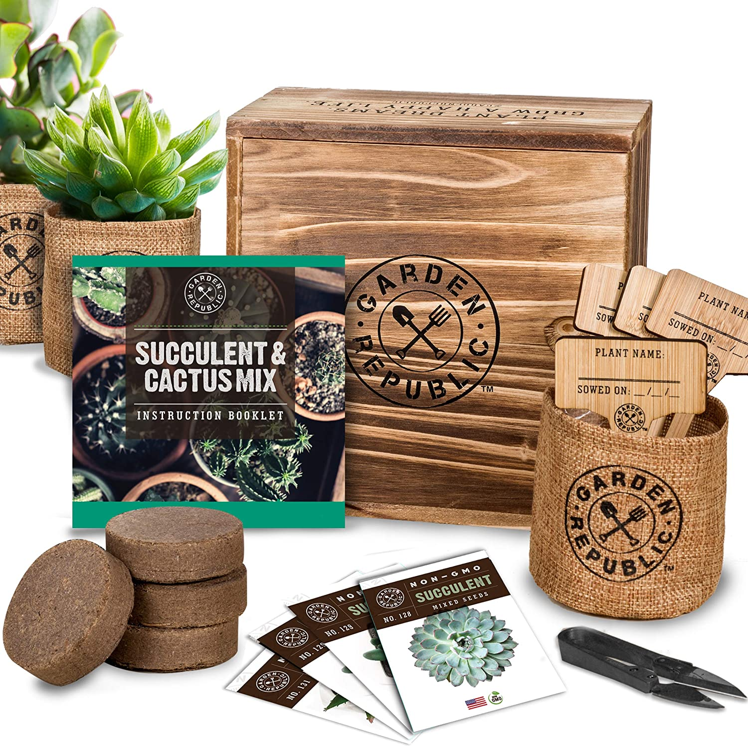 Succulent and Cactus Seed Starter Kit