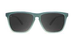 Sunglasses with Blue-Grey Frames and Polarized Smoke Lenses, Front
