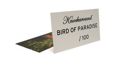 Knockaround Bird of Paradise Sunglasses, Insert Card