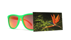Knockaround Bird of Paradise Sunglasses, Front